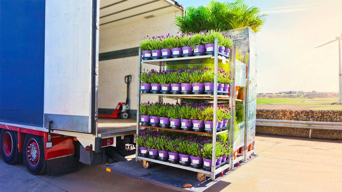 transport de plantes et fleurs à bordeaux